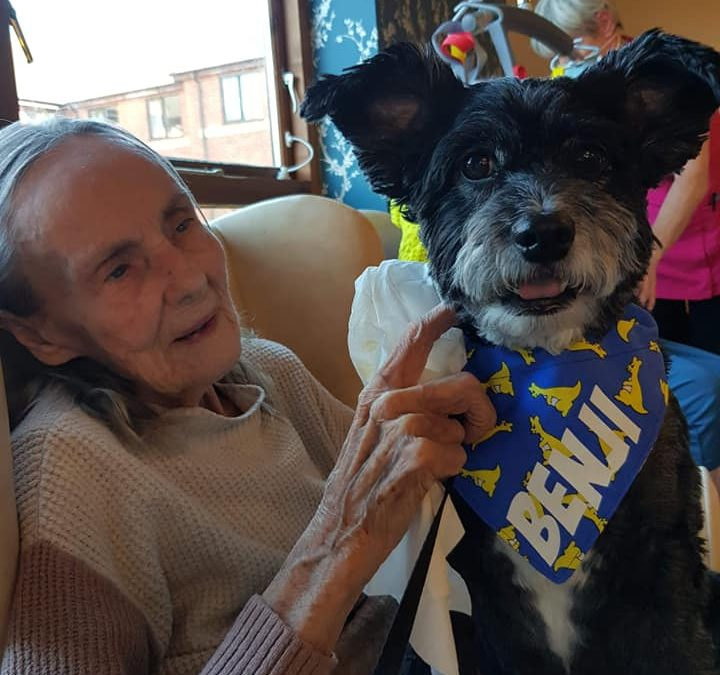 Therapy Benji Spends Time at Melbourne House Care Home
