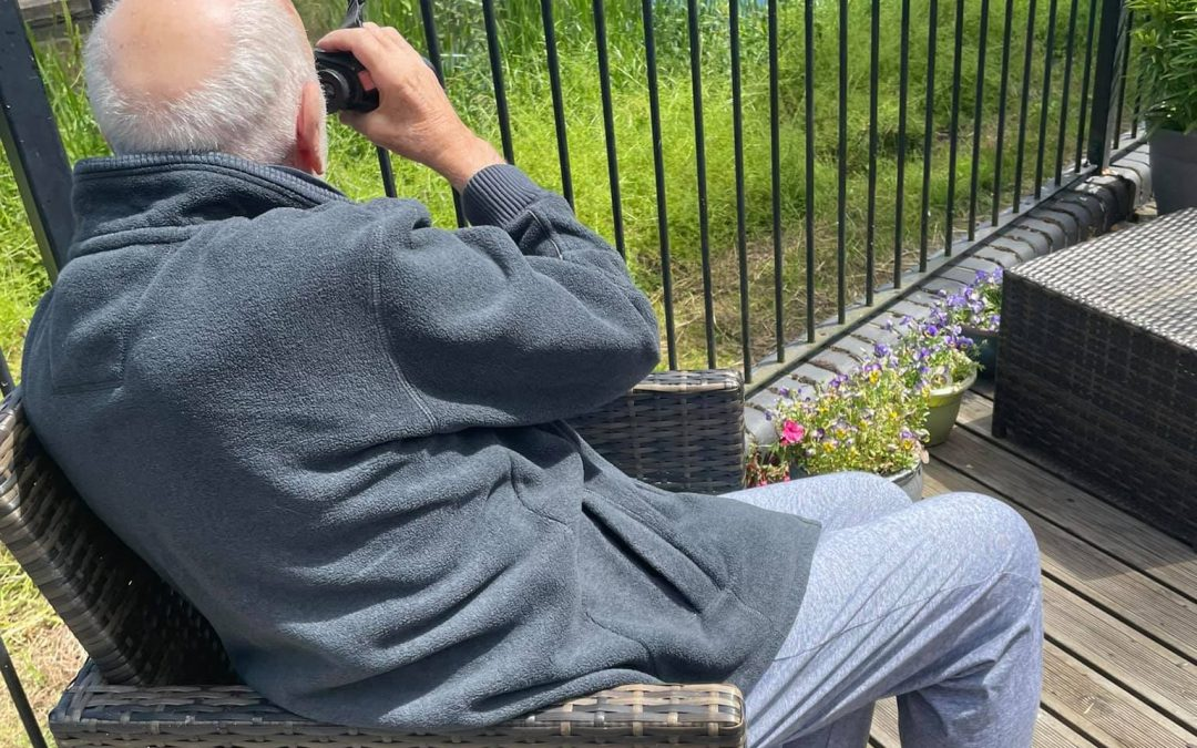 Bird Watching Delight At Canal Vue