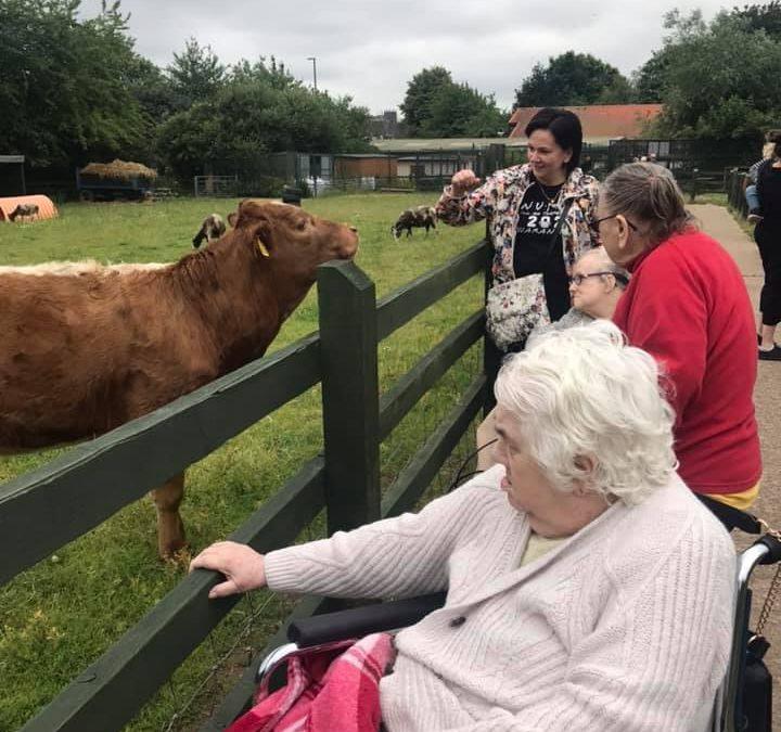 Trip Out To City Farm